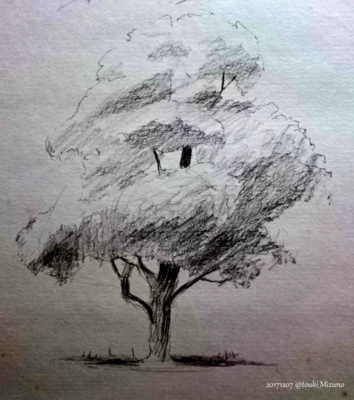 171207_tree_.png