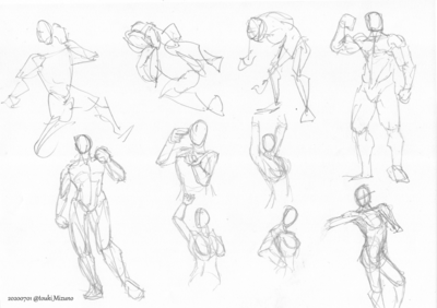 20200701_anatomy_01.png