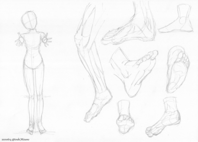 20210614_anatomy.png