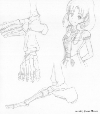 20210615_anatomy.png